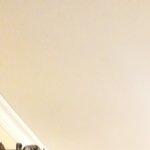 Lorenzo Mineo's picture