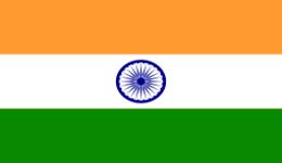 Kite in India