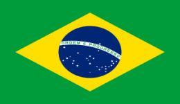 Kite in Brazil