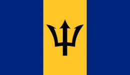 Kite in Barbados