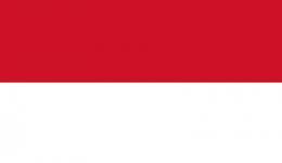 Kite in Indonesia