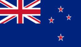 Kite in New Zealand