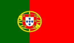 Kite in Portugal