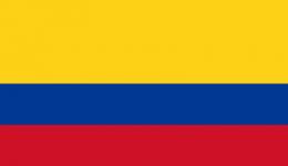Kite in Colombia