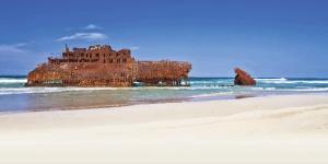 Kite in Kite Beach (Shark bay) - Cape Verde