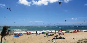 Kite in Silver Rocks Barbados