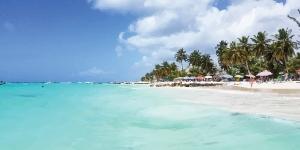Kite in Worthing Beach Barbados